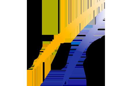 Логотип партнёра FIS