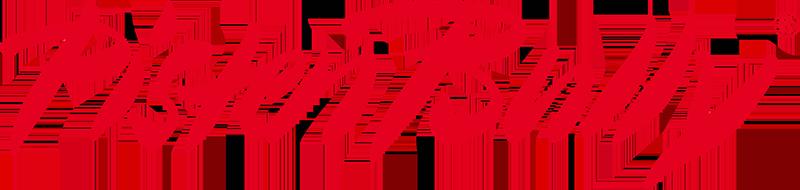 Логотип партнёра: Pistenbully
